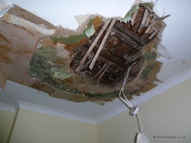 Water Damage Ealing Water Damage Repairs and Restoration Contractors